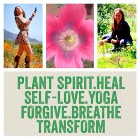 Plant Spirit Vibration Transformation