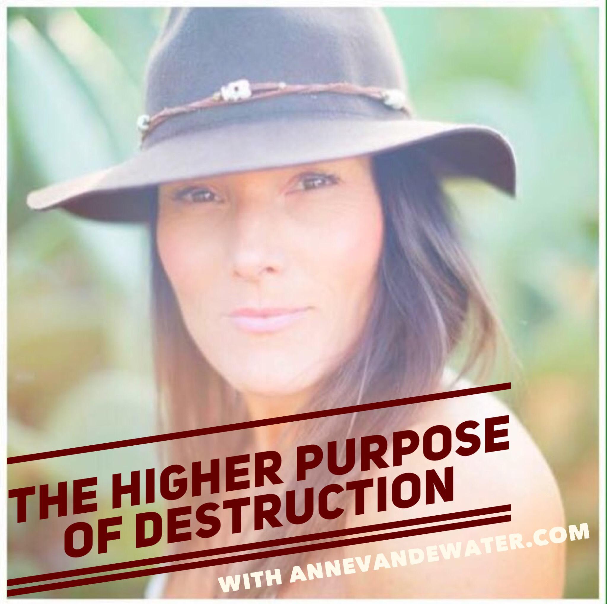 THE HIGHER PURPOSE OF DESTRUCTION